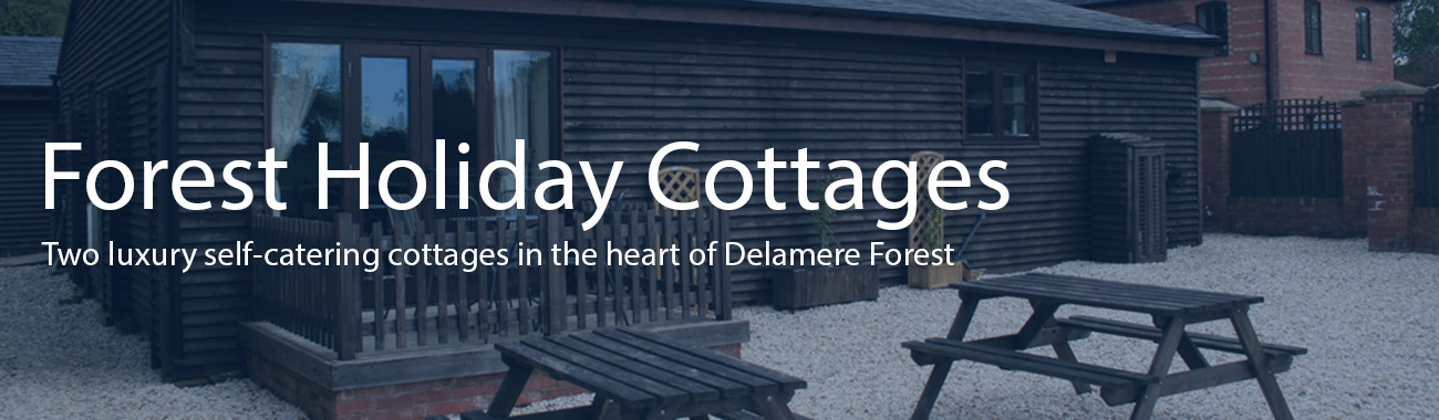 Forest holiday cottages banner.full