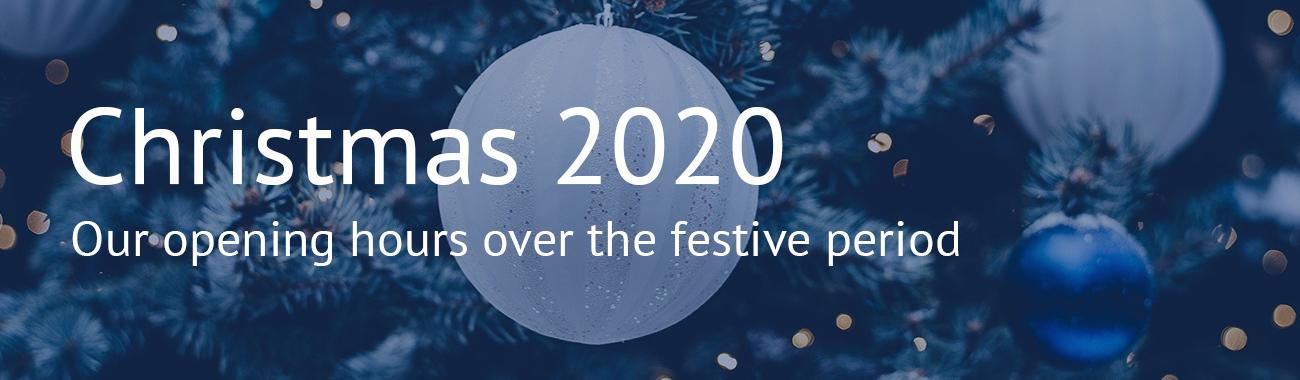 Christmas banner.full