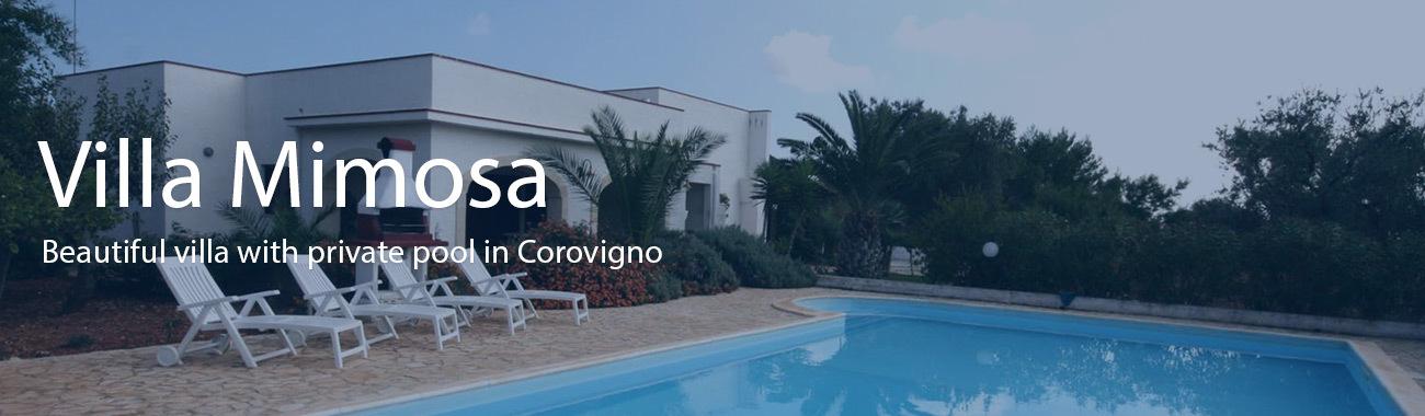 Villa mimosa banner.full