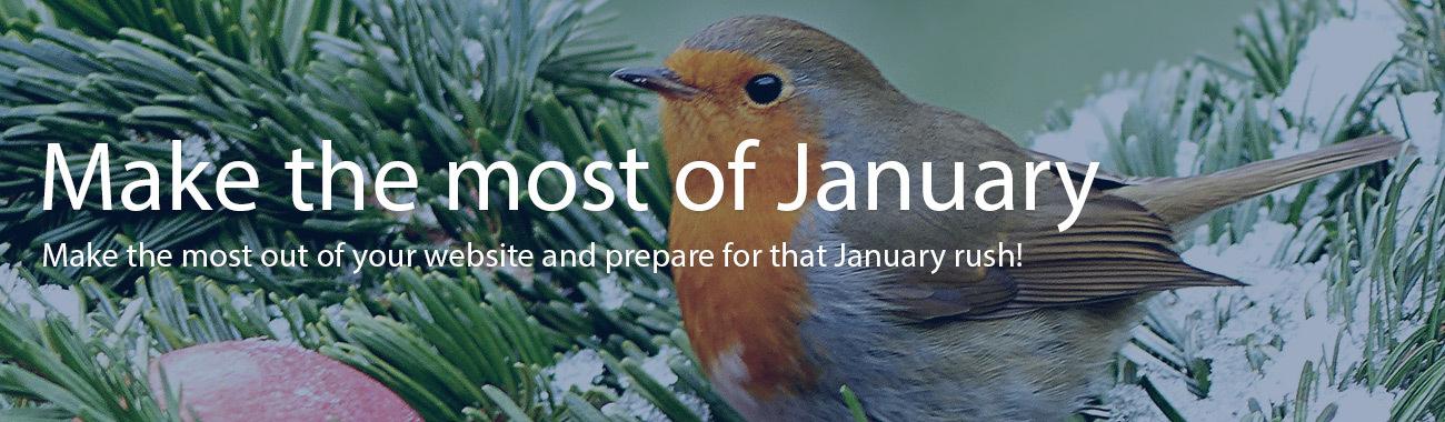 January banner.full